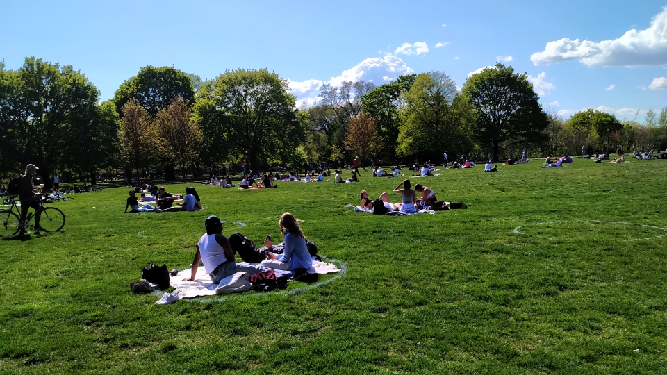 Residents enjoy the weather in socially distanced circles at Trinity Bellwoods Park on May 13, 2021. (Austin Delaney/CTV News Toronto)