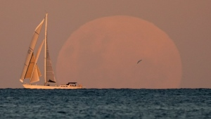 A yacht sails past as the moon rises in Sydney Wednesday, May 26, 2021. A total lunar eclipse, also known as a Super Blood Moon will take place later tonight as the moon appears slightly reddish-orange in color. (AP Photo/Mark Baker)