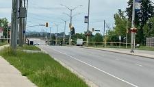 Pedestrians killed