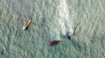 This satellite image from Planet Labs Inc. shows a sinking ship, the Singapore-flagged MV X-Press Pearl, with the oil leak line in the Laccadive Sea off Sri Lanka Monday, June 7, 2021. (Planet Labs Inc. via AP)