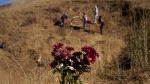 Flowers are placed in honor of Kobe Bryant, Tuesday, Jan. 26, 2021, in Calabasas, Calif., at the site of the helicopter crash that killed Bryant, his daughter Gianna, and seven others one year ago. (AP Photo/Marcio Jose Sanchez)