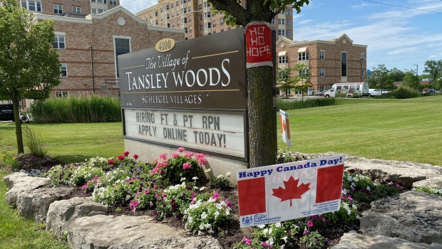 Tansley Woods l