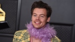FILE - In this Sunday, March 14, 2021, file photo, Harry Styles poses in the press room at the 63rd annual Grammy Awards at the Los Angeles Convention Center. (Photo by Jordan Strauss/Invision/AP, File)