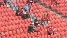 TFC fans