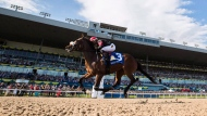 """FILE - Luis Contreras, aboard """"Holy Helena"""" crosses the line to win the 158th running of the Queen's Plate horse race at Woodbine Race Track, in Toronto on Sunday, July 2, 2017. THE CANADIAN PRESS/Mark Blinch"""
