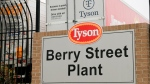 In this image from the Howard Center for Investigative Journalism at the University of Maryland's Philip Merrill College of Journalism, a Tyson Berry Street Plant sign is seen in front of the Springdale, Arkansas, Tyson parking lot for hauling chicken products, April 20, 2021. The Berry Street location had more than 400 COVID-19 cases among the workers, the highest number of cases across Arkansas poultry plants. (Abby Zimmardi/University of Arkansas via AP)