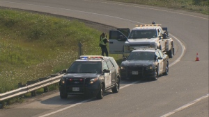 Provincial police are investigating a fatal collision on Highway 401 south of Guelph.