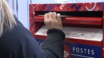 A person puts a mail-in ballot in a Canada Post mail box. (CTV News)