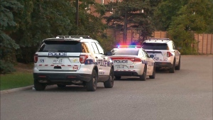 Police respond to a stabbing near Railroad Street and McMurchy Avenue North in Brampton Tuesday October 19, 2021.