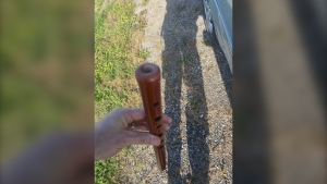 Halton Regional Police say that a man was caught playing a flute with both hands while driving in Burlington. (Twitter/Halton Regional Police)