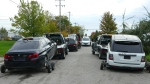 York Regional Police released this photograph of recovered stolen cars on Oct. 21, 2021.