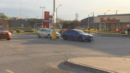 Police are investigating a shooting in a plaza parking lot in North York.