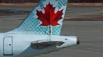 An Air Canada plane is seen in this file photo. (The Canadian Press/Andrew Vaughan)