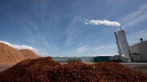Wood chips are seen in the foreground at ProSelect green house in Delta, B.C., on Friday, April, 20, 2012 as a stack releases clean emissions into the air. (The Canadian Press/Jonathan Hayward)