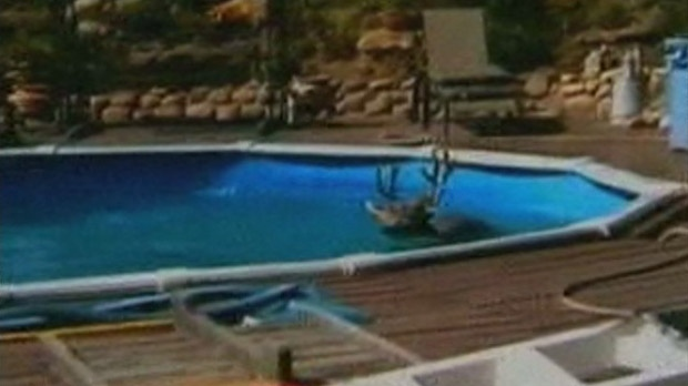 This screen grab from amateur video shows a deer stuck in a swimming pool in a Colorado Springs, Colo., backyard.