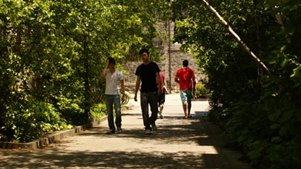 People walk along a treed path at the University of Toronto in this file photo. (CP24/Chris Kitching)
