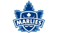 The Toronto Marlies logo pictured in this file photo.